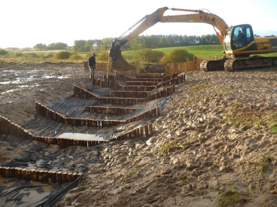 Budowa urządzeń wodnych oraz stawów dla płazów.